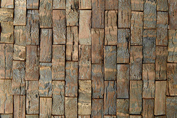 coconut-tree-bark